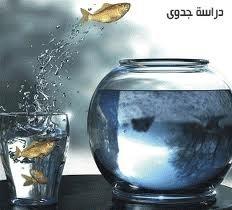 20120625-135804.jpg